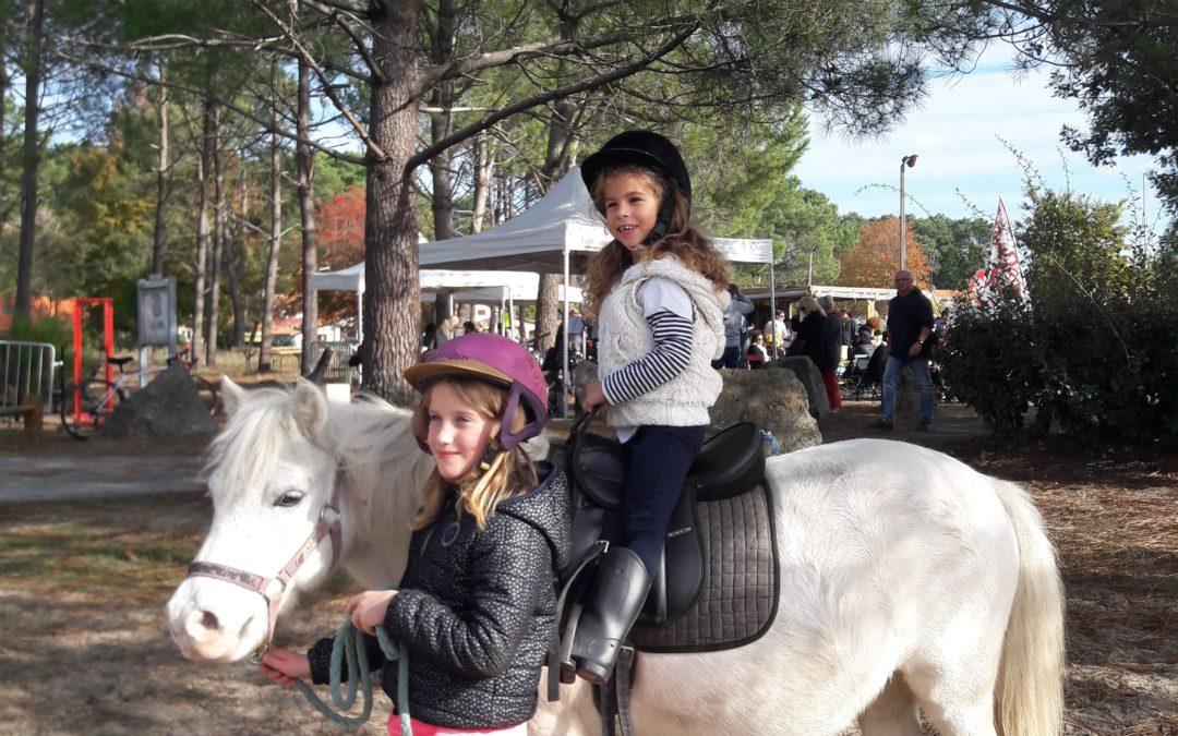 3 nov 2018 La Berle en fête Baptême poney