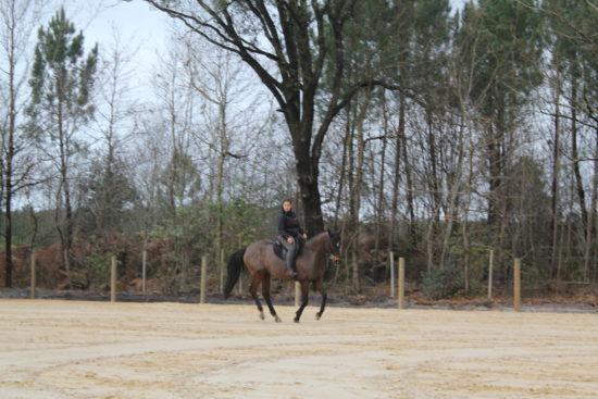 carrière 60x30 en sable de Fontainebleau
